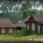 Yayasan Widya Guna, Widya Guna Foundation Bedulu Bali Indonesia
